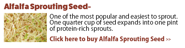 Click here to buy Alfalfa Sprouting Mix!