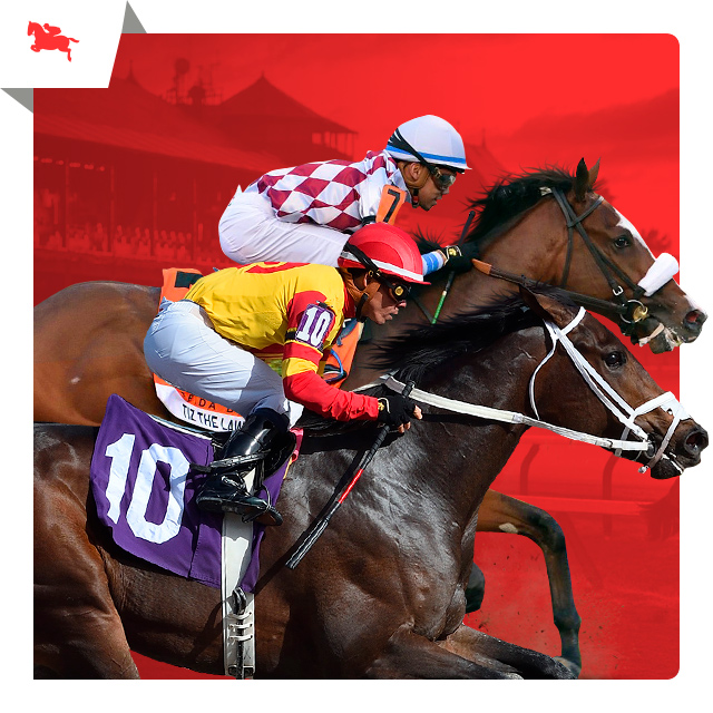 $5,000 Travers Stakes Matchups Contest
