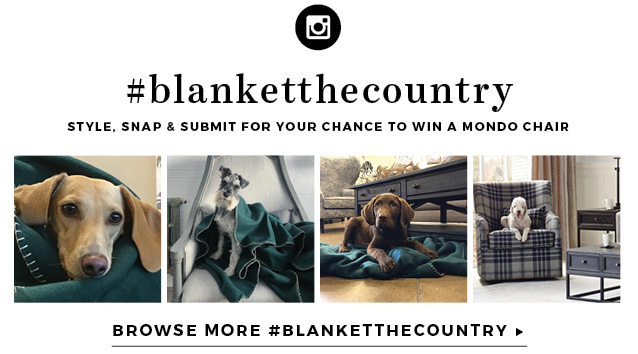 #blanketthecountry style, snap, and submit for your chance to win a mondo chair