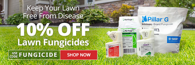 Save 10% on Lawn Fungicides