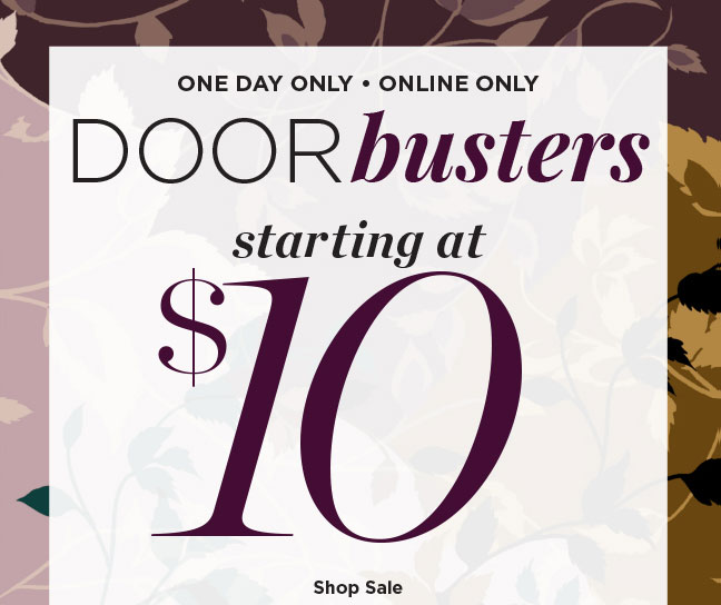 One Day Only, Online Only - Door Busters Starting at $10! Shop Sale.
